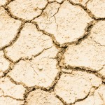 dry drought field