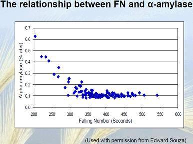 FN graph
