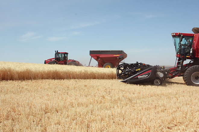 The next stop gave tour members a chance to see a combine and bank-out wagon in action.