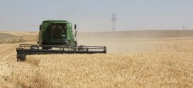 Gov. Inslee announces agriculture COVID-19 requirements