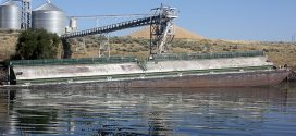 Columbia, Snake river systems have crucial role in moving grain to port